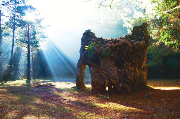 Roca en forma de elefante con rayos de sol reflejandose