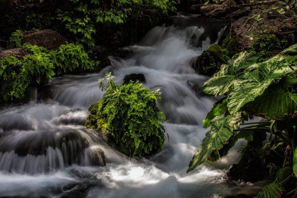 Rio corriendo cuesta abajo sobre piedras